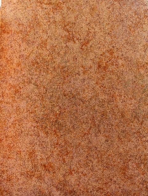 Copper Textured Wallpaper SFX676G91